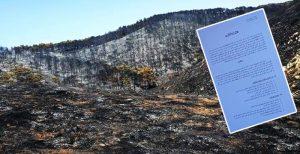 فعاليات للمجتمع المدني بالاقليم تحمل المسؤولية لعمالة الدريوش وتطالب بتعويض الفلاحين المتضررين من حريق افرني وتفرسيت