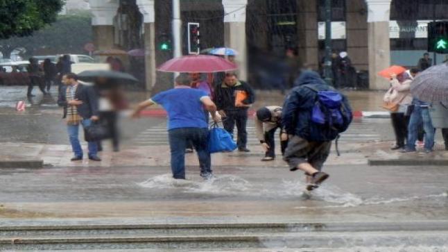 نشرة خاصة.. أمطار قوية محليا رعدية يومي الأربعاء والخميس بعدد من الأقاليم