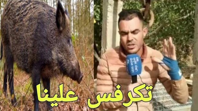 ها شنو دار ليهم الحلوف وشاب يناشد المسؤولين للتدخل