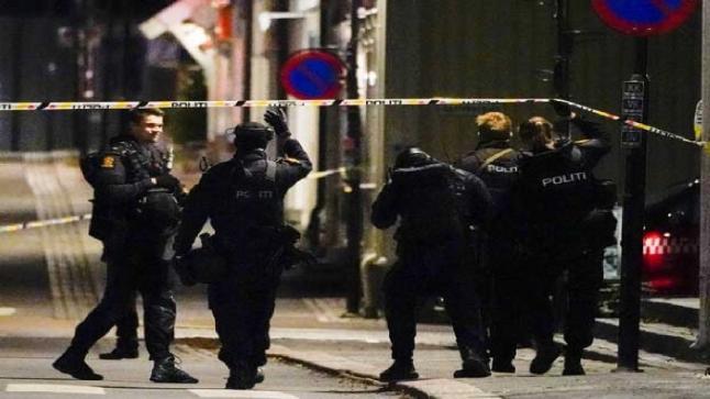 قتلى وجرحى في هجوم مسلح بمدينة نرويجية